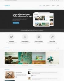 Template HTML5 Site Para Fotógrafos, fotos e Videos Centindu