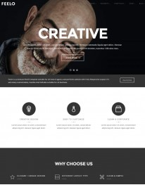 Template HTML5 Web Design, Desenvolvedores de Web, Feelo