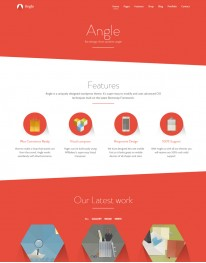 Tema Wordpress Blogs, Web Design e Fotos Angle Theme
