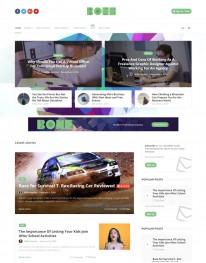 Tema Wordpress Agencia de Publicidade e Web Design Bone
